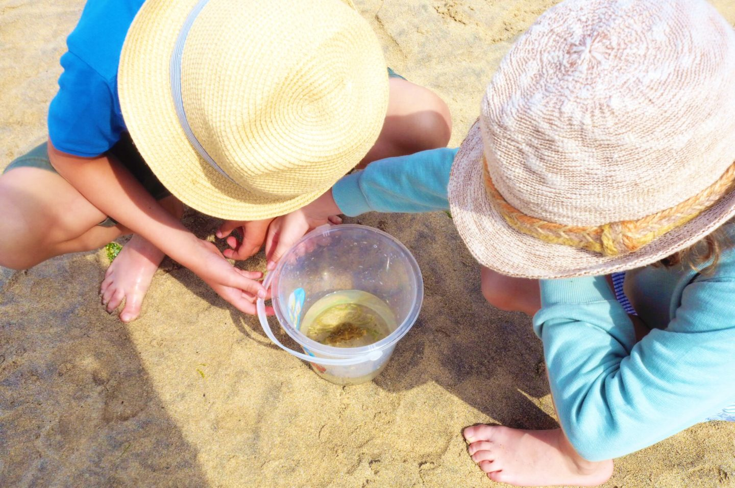 Cornwall Adventures - Crabbing in St Ives